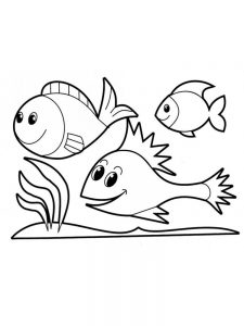 A Fish Coloring Page