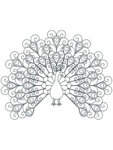 Advanced Peacock Coloring Pages