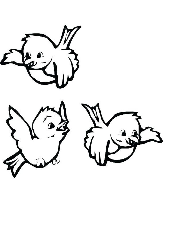 African Bird Coloring Pages