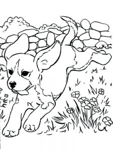 Anime Puppy Coloring Pages