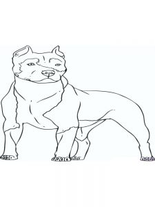 Baby Bulldog Coloring Pages