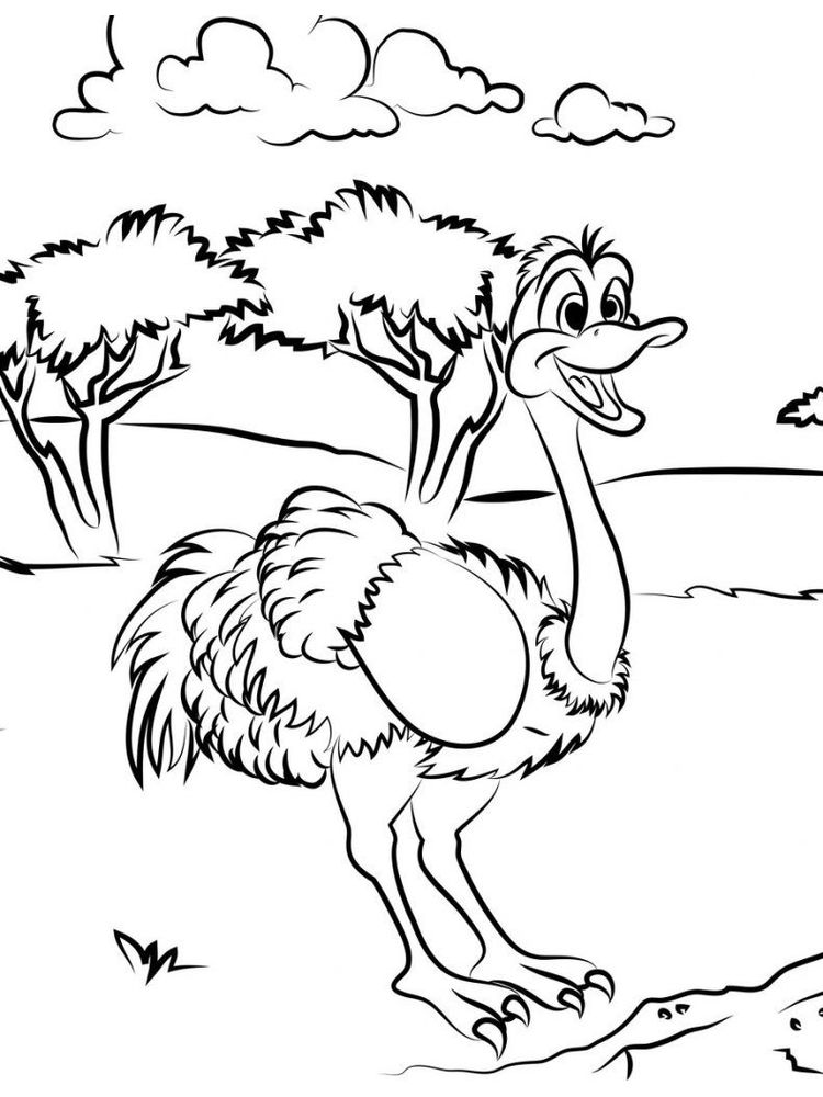 Baby Ostrich Coloring Page