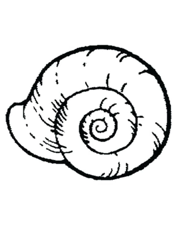 Beach Shell Coloring Pages