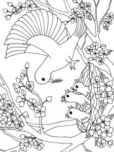 Big Bird Coloring Pages