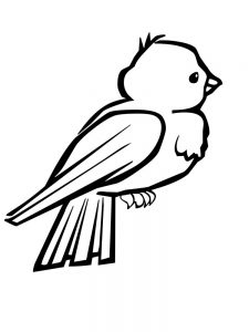 Big Bird Coloring Pages Printable