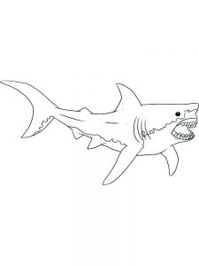 Big Shark Coloring Pages