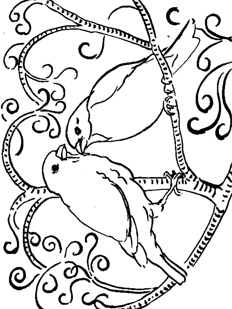 Bird And Flower Coloring Pages