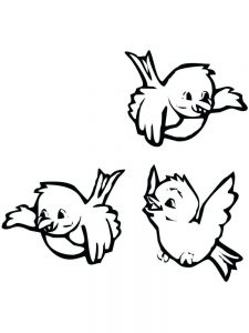 Bird Coloring Pages Download