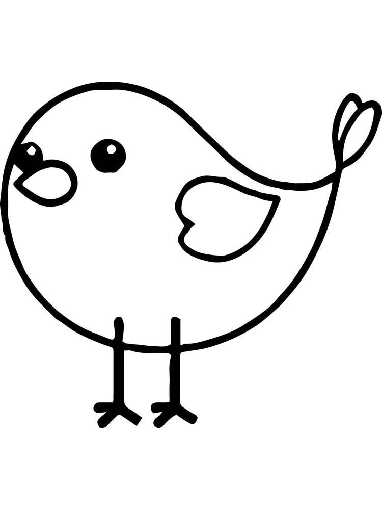Bird Coloring Pages For Adults