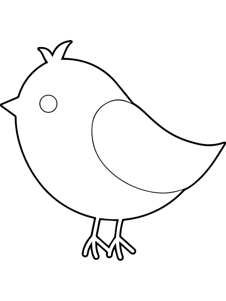 Bird Coloring Pages Momjunction