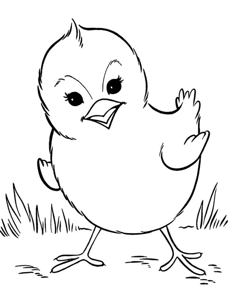 Bird Coloring Pages Preschool