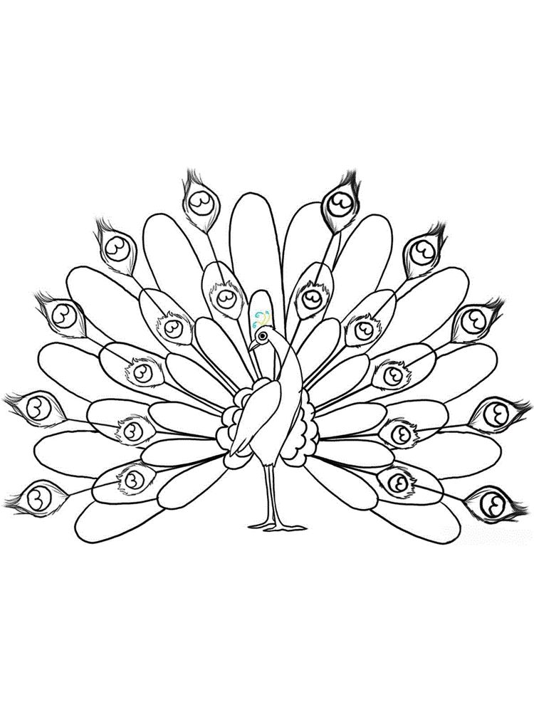 Bird Coloring Pages To Print