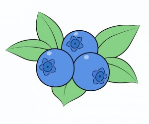 Printable Blueberry Coloring Pages