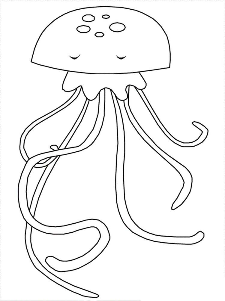 box jellyfish coloring pages | Box Jellyfish Coloring Pages