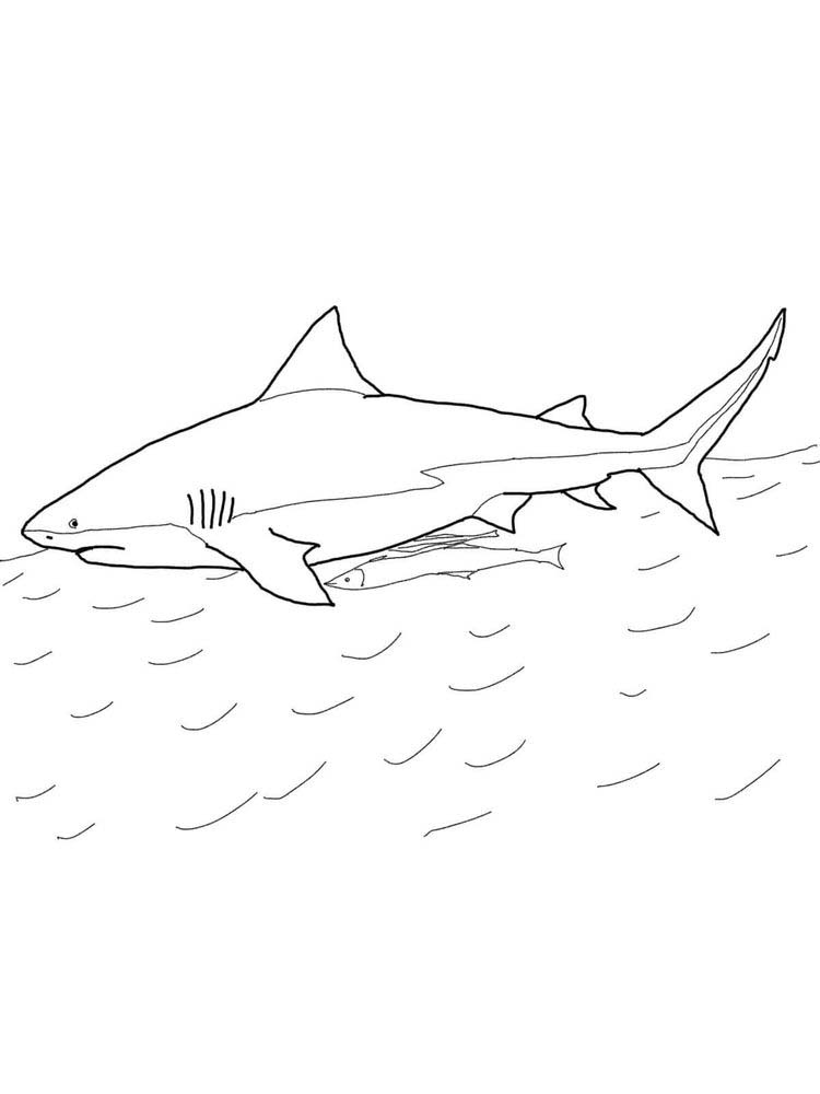 Bruce Shark Coloring Pages