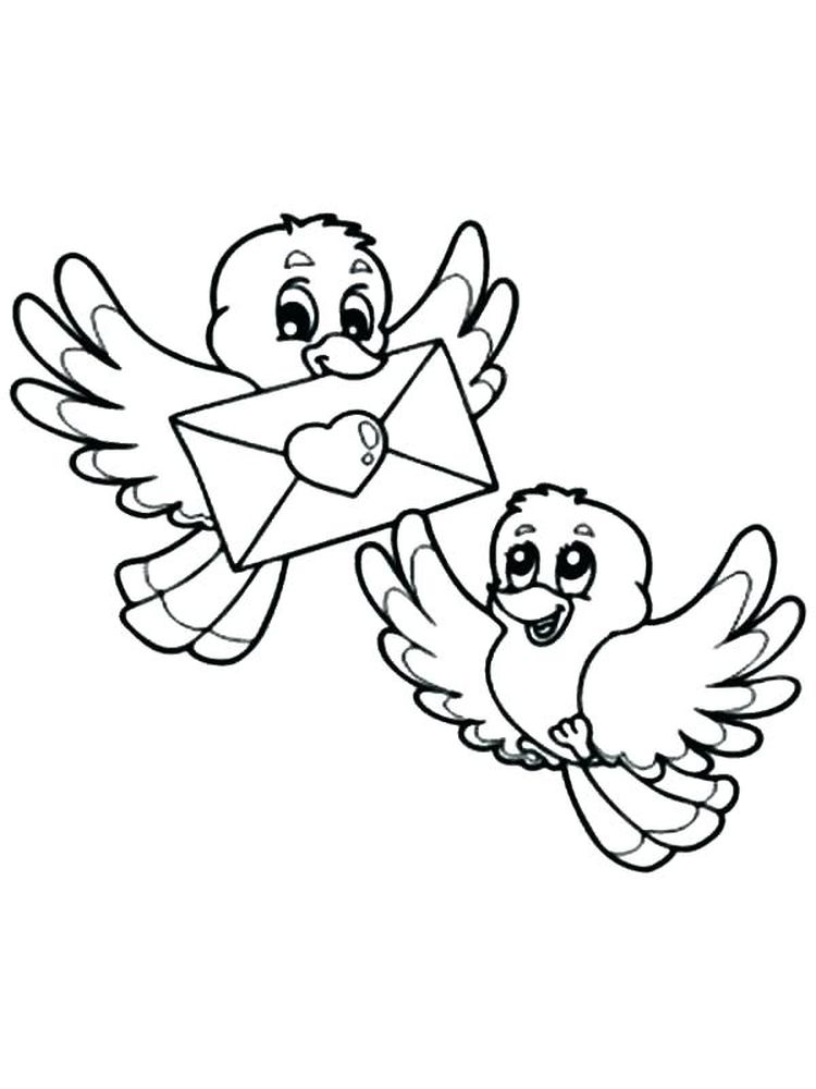 Budgie Bird Coloring Pages