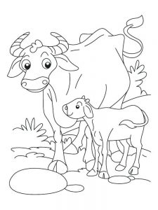 Buffalo Bills Football Coloring Pages