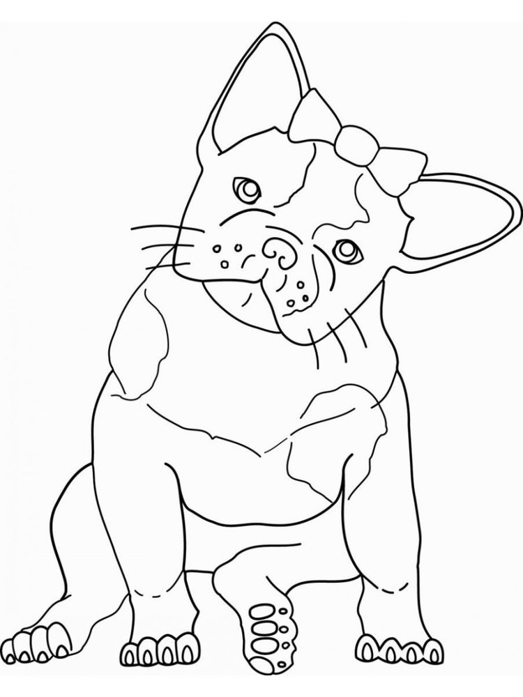 Bulldog Face Coloring Pages