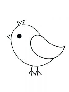 Burgess Bird Coloring Pages