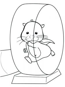 Cartoon Hamster Coloring Pages