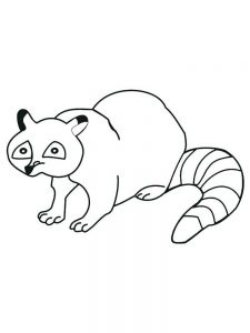 Cartoon Raccoon Coloring Pages