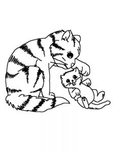 Cat Coloring Pages Cute