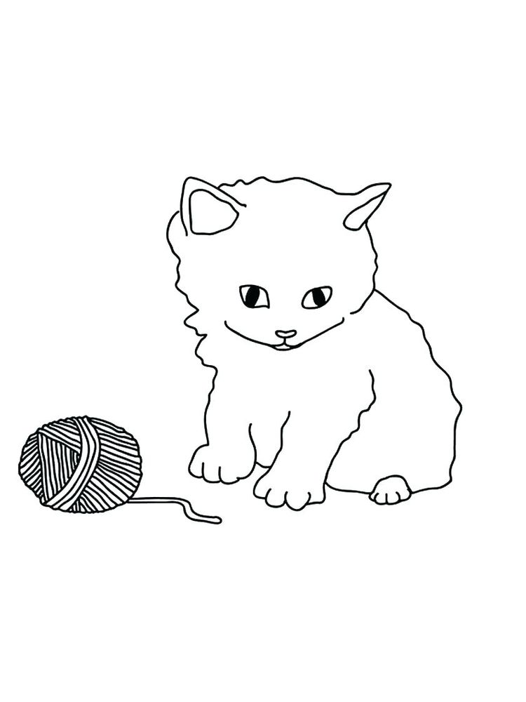 Cat Coloring Pages Easy