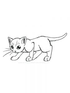 Cat Coloring Pages Online