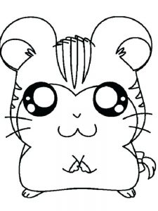 Chubby Hamster Coloring Pages