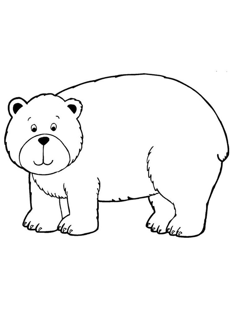 Chubby bear coloring pages