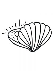 Coloring Page Of A Shell