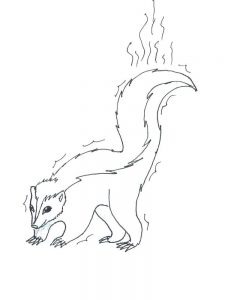 Coloring Page Of A Skunk
