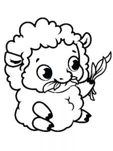 Coloring Pages For Sheep