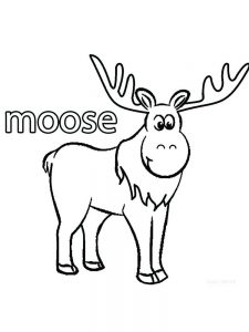 Coloring Pages Moose