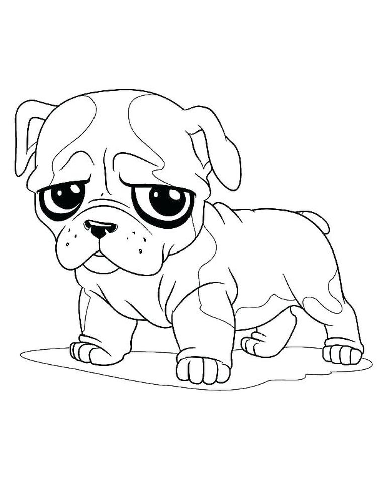 Coloring Pages Of A Bulldog