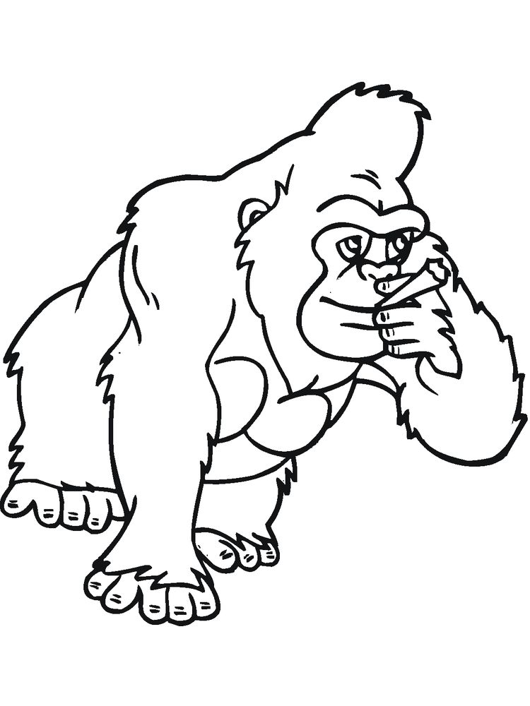 Coloring Pages Of A Gorilla