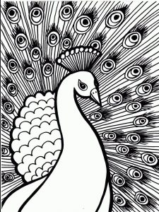 Coloring Pages Of A Peacock
