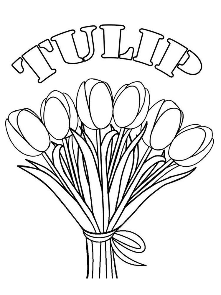 Coloring Pages Of A Tulip