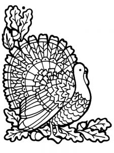 Coloring Pages Of A Turkey