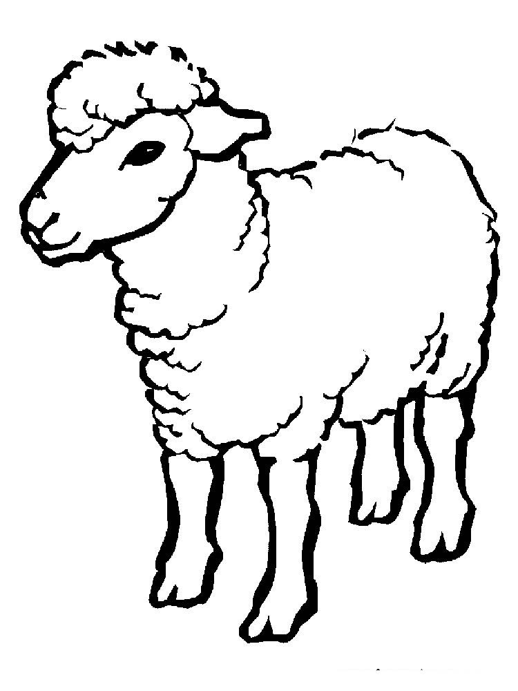 Coloring Pages Of Sheep And Shepherds