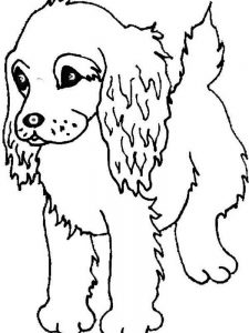 Coloring Pages Puppy And Kitten