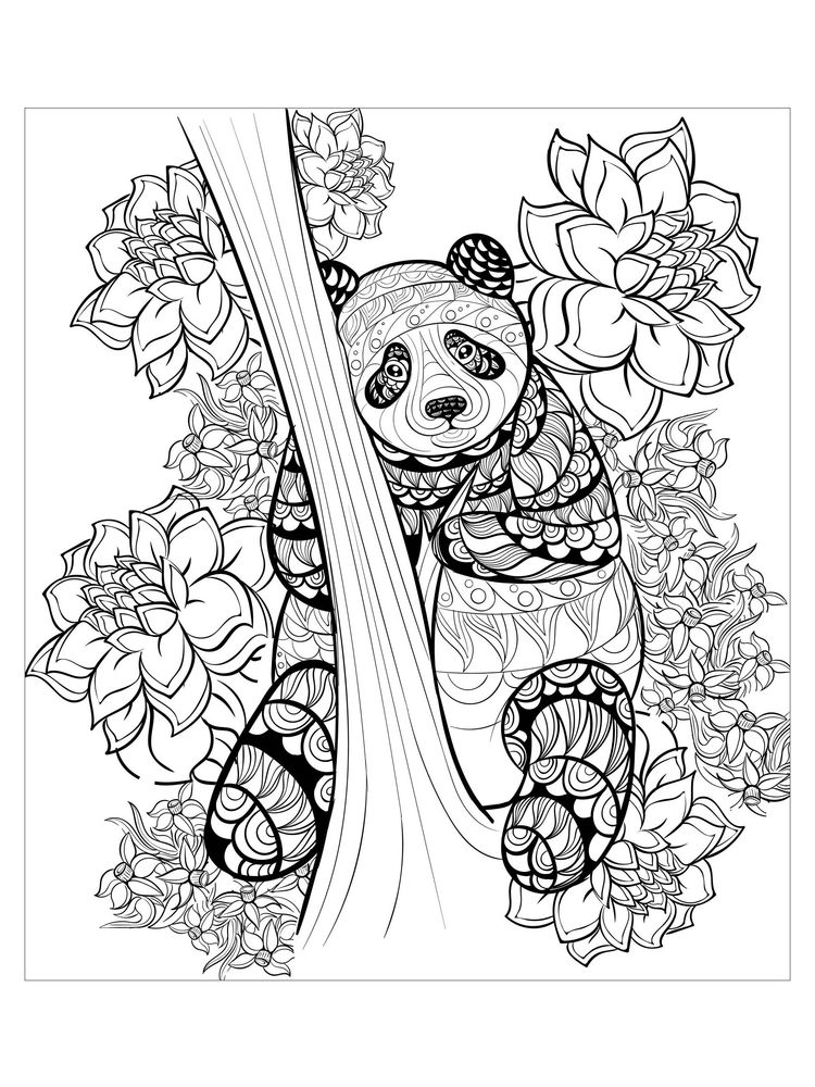 Combo Panda Coloring Pages Printable