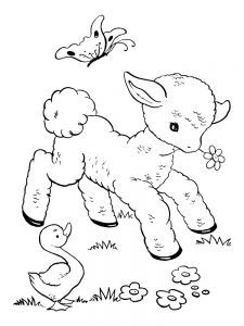 Counting Sheep Coloring Pages