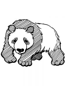 Cute Baby Panda Coloring Pages 1