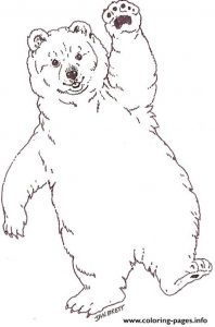 Cute Baby Polar Bear Coloring Pages Printable
