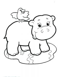 Cute Hippo Coloring Pages