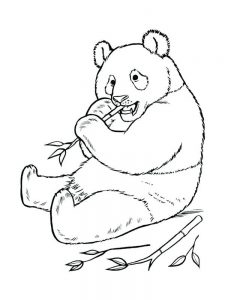 Cute Panda Coloring Pages To Print