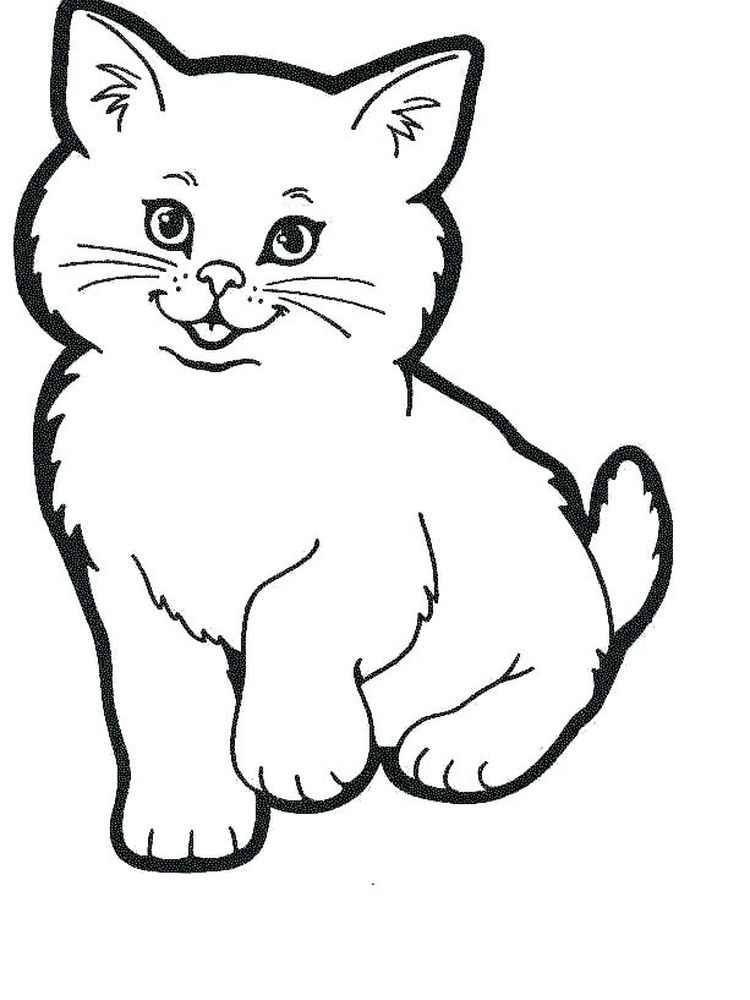 Cute Realistic Kitten Coloring Pages
