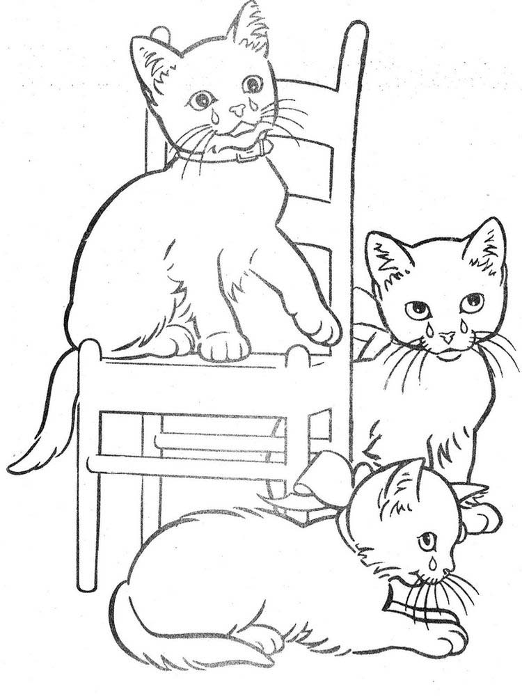 Detailed Kitten Coloring Pages