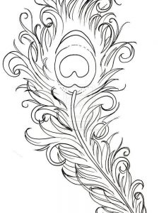 Detailed Peacock Coloring Pages